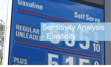 Sensitivity Analysis - Elasticity